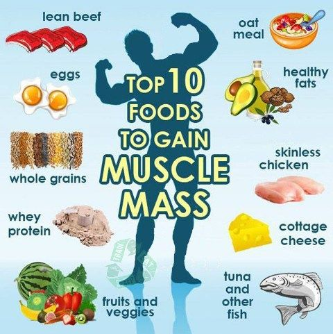 Food For Muscle Gain