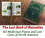 """The Lost Book Of Remedies"" Review: Read This Before You Buy!"