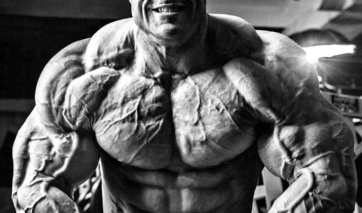 Evan Centopani Workout